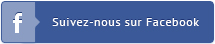 Bouton Facebook Esprit Bois